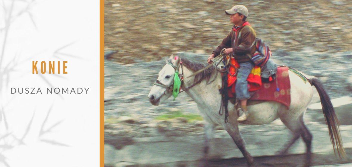 Konie – dusza nomady. Festiwale jeździeckie w Tybecie