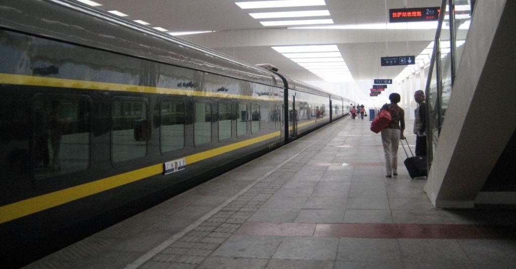 lhasa-115