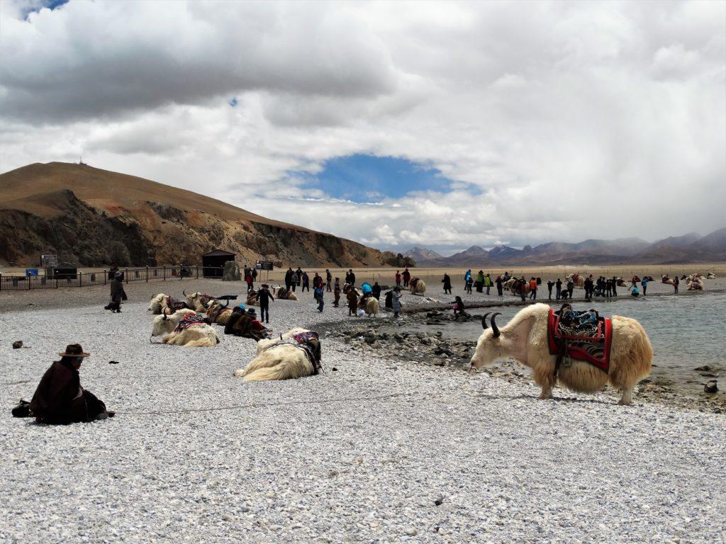 Tybet, Namtso; jaki; Wyprawydoazji.pl